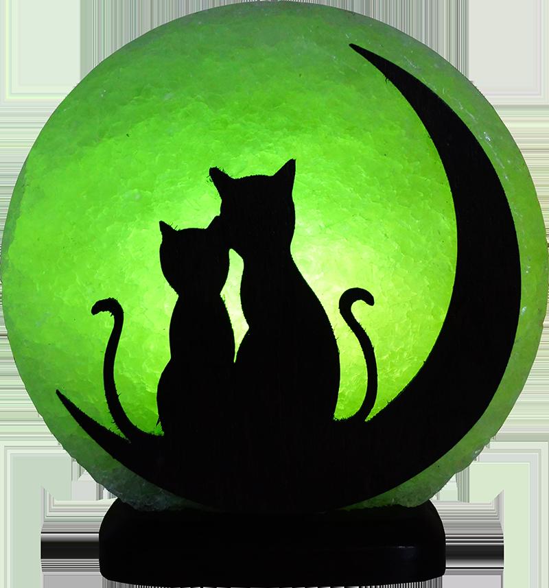 коты на луне